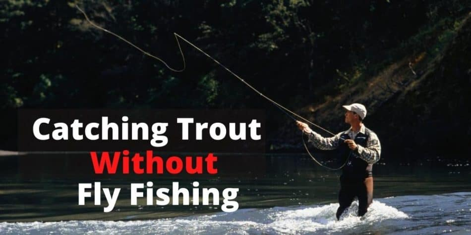 Can You Trout Fishing Without Fly Fishing_
