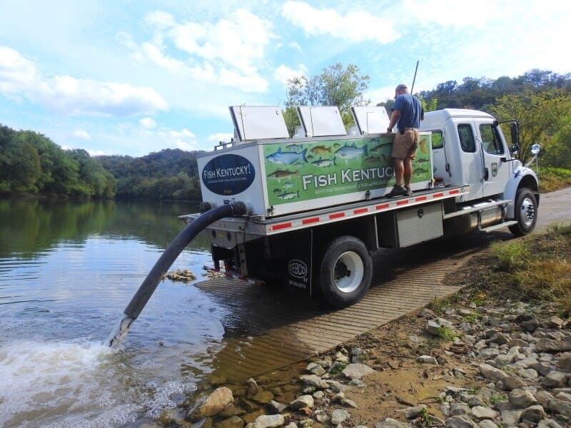 Stocked Trout Truck